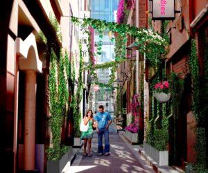 Vertical Garden laneway