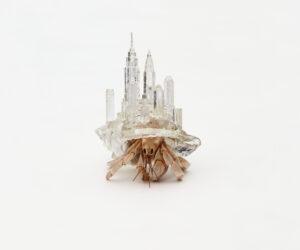 Aki Inomata, Why Not Hand Over a 'Shelter' to Hermit Crabs series, 2009–16. Image: courtesy of Maho Kubota Gallery