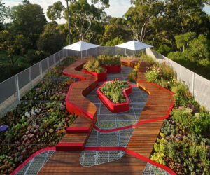 Burnley Living Roofs by Hassell – 2014 Landscape Architecture Award for Design.